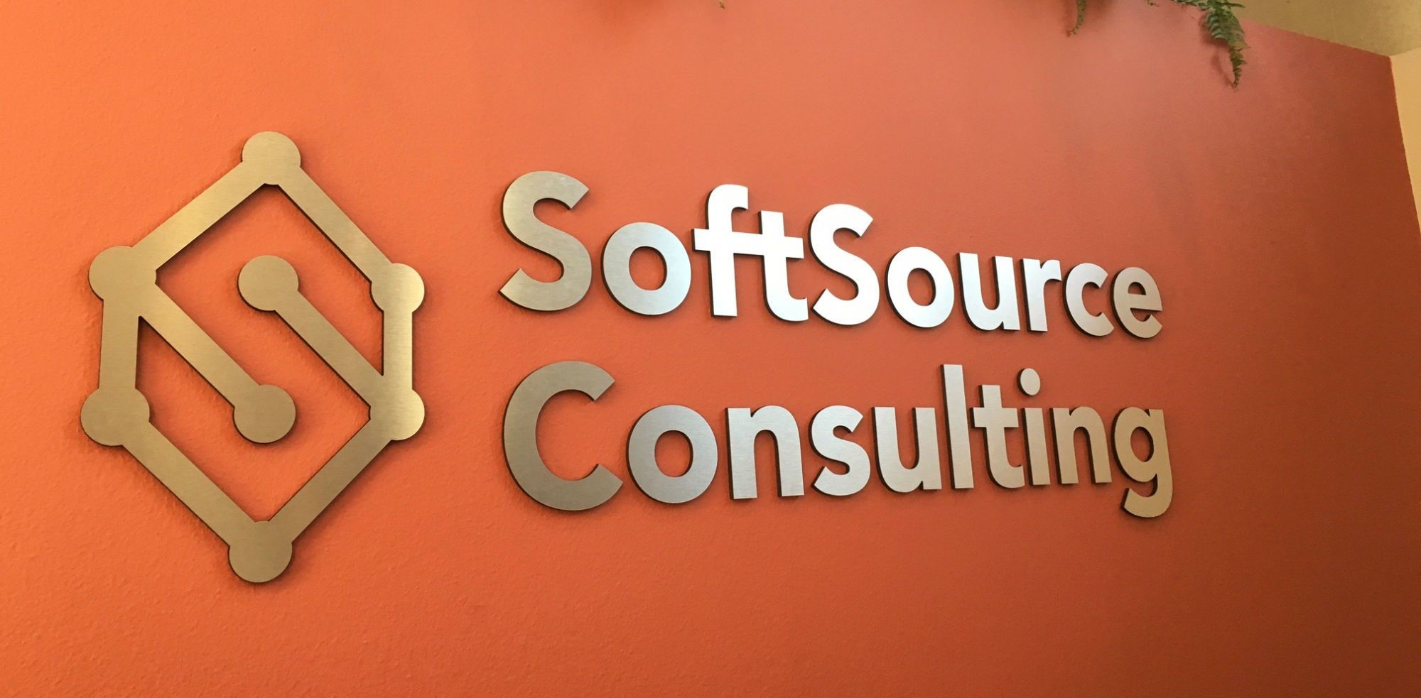 SoftSource Consulting Dimensional Logo Sign