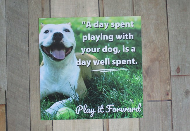 Greene County Parks & Trails | Dogs | Aluminum Signs | Exterior Signs | Government and Municipal Signs | Beavercreek, OH