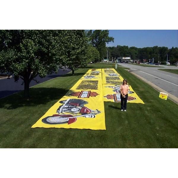 Sacramento Banners