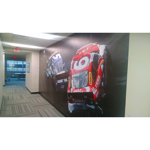 Wall Graphics and Murals